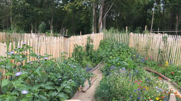Jardins familiaux site des Platrières 7