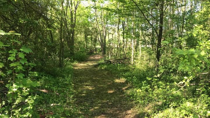 Chemin espace naturel sensible